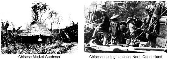 china11.jpg - 32520 Bytes